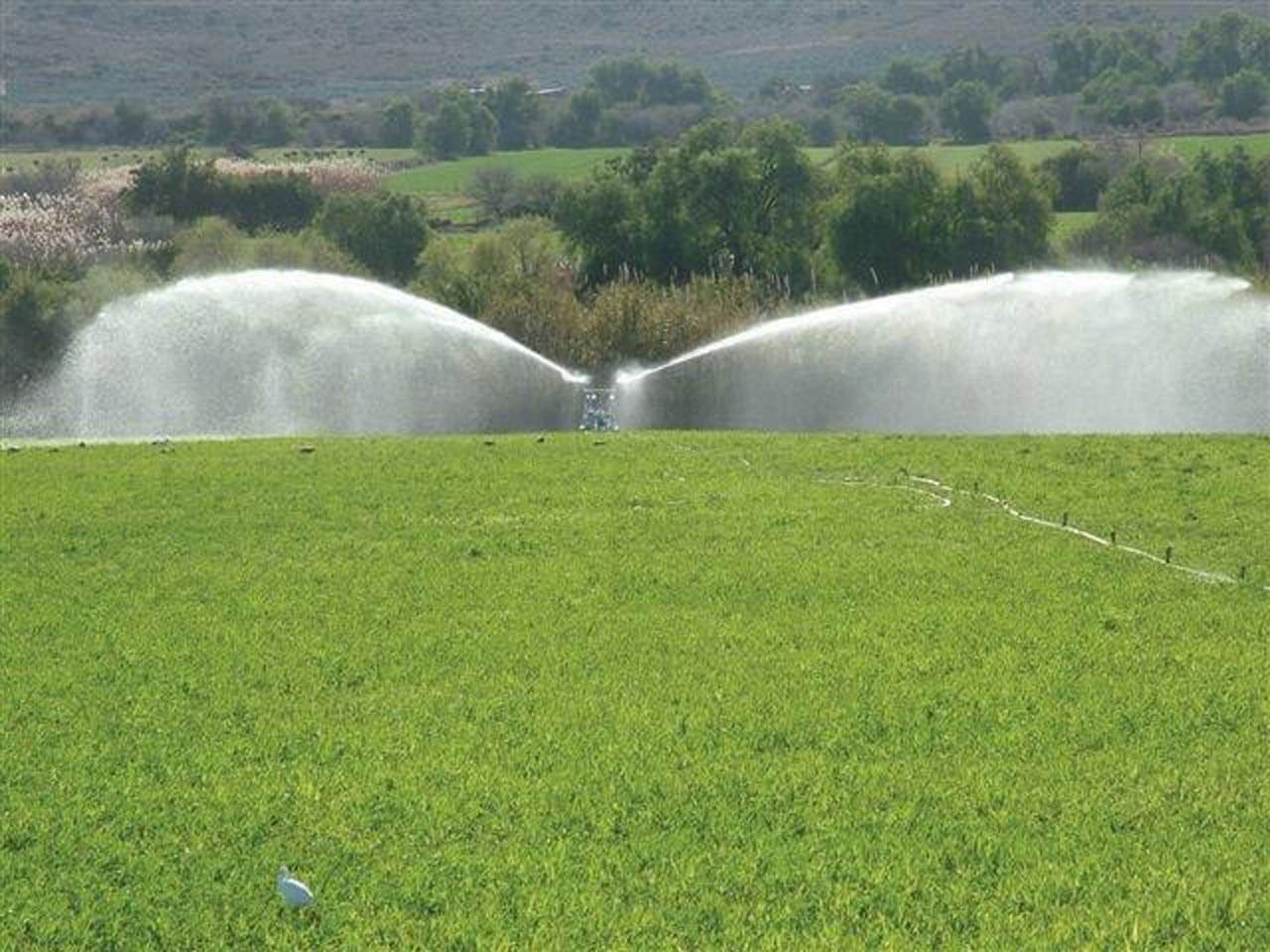 Rotrix-Africa-Rainmaker-Irrigation-System-06