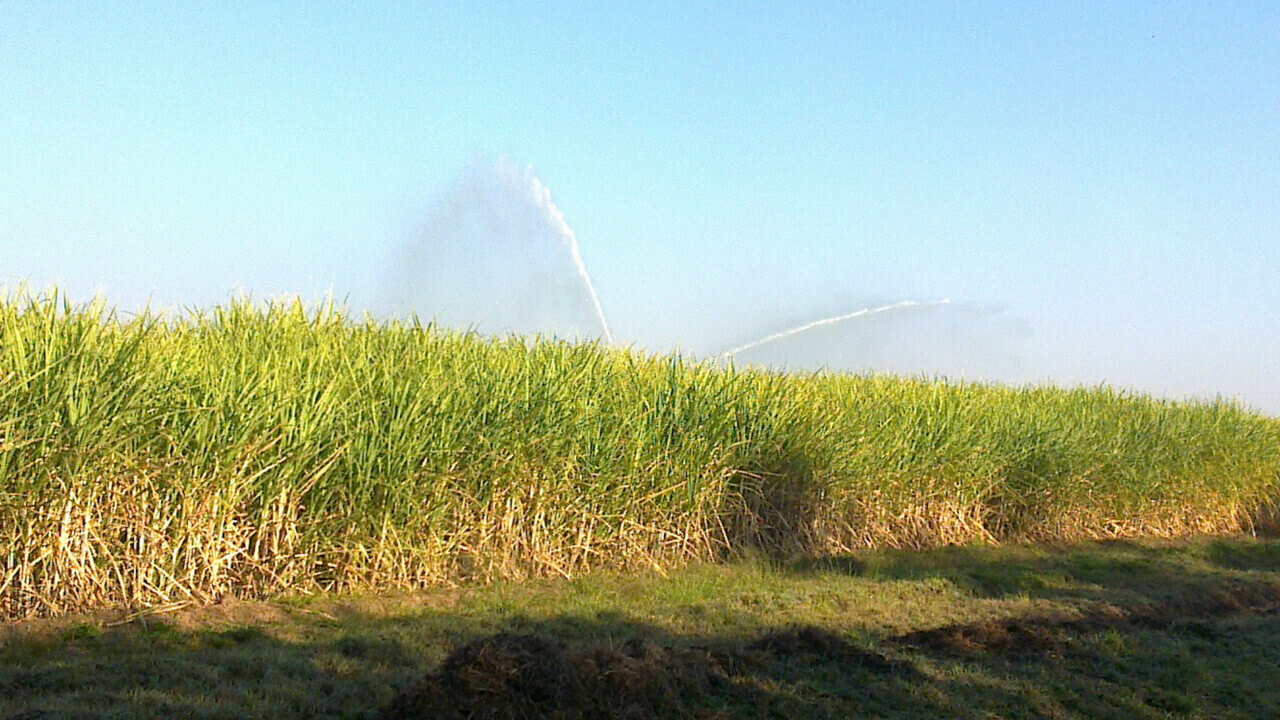 Rotrix-Africa-Cane-Master-300-Irrigation-System-11